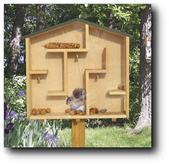 A-Mazing Squirrel House Woodworking Plans